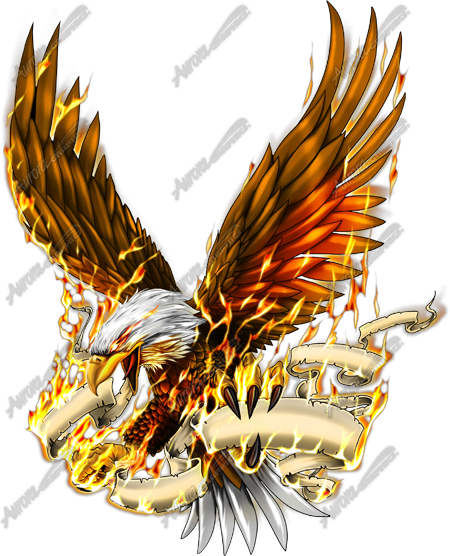 Eagle in Flames - Aurora Graphics