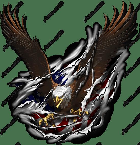 Eagle Tear - Aurora Graphics