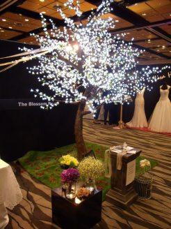 The Blossom Room, Pukekohe