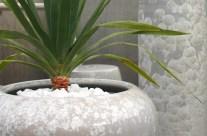 Crystalline Planters
