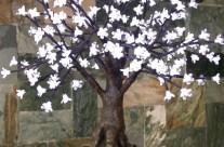Bonsai Blossom Tree 175
