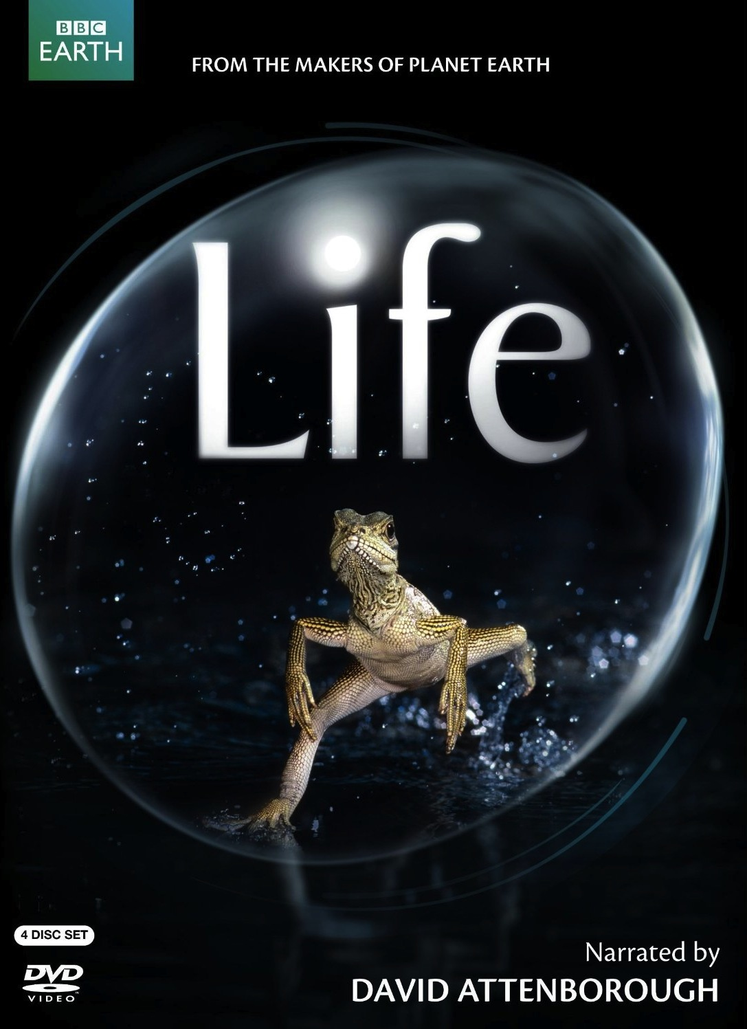 Bbc Discovery Channel Life Worksheets
