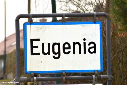 Eugenia in Niederösterreich