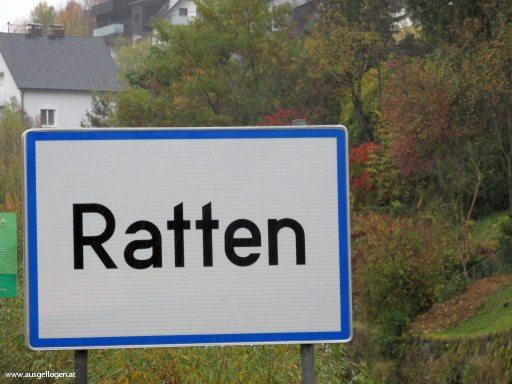 Ratten in der Steiermark - Ortstafel Tier