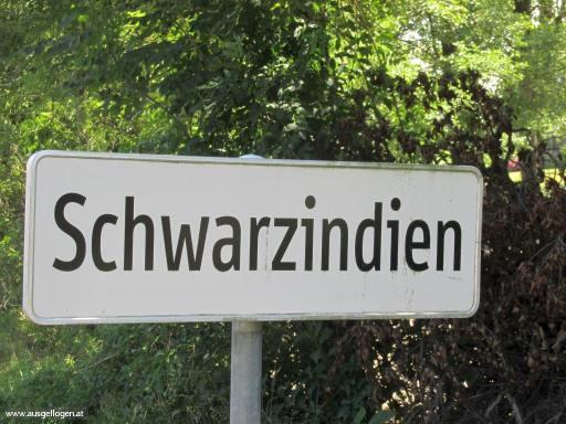 Schwarzindien in Oberösterreich
