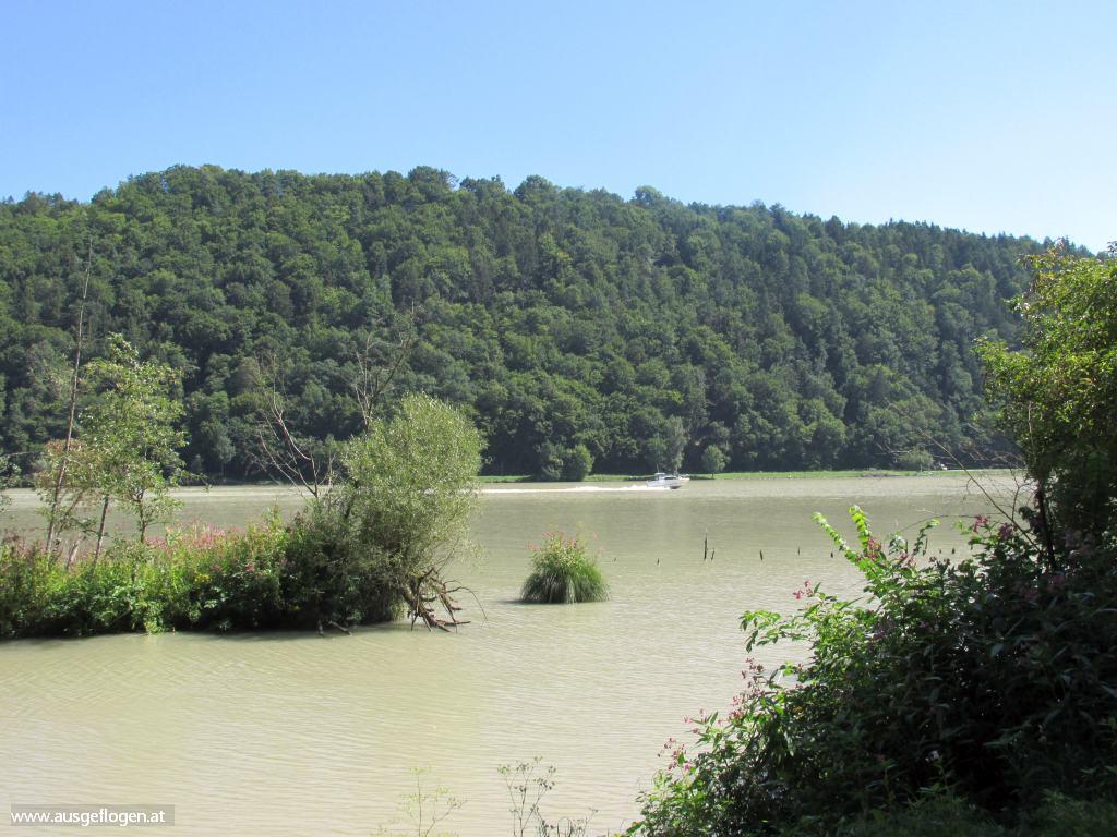 Donauradweg Naturschutzgebiet