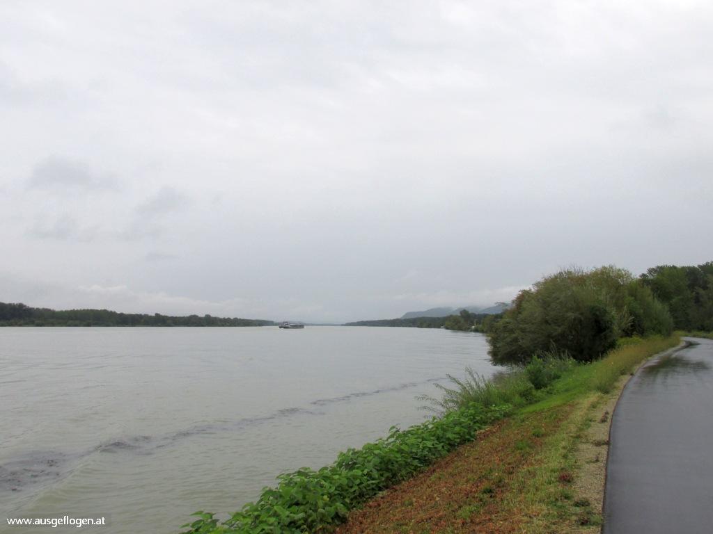 Donauradweg Regen