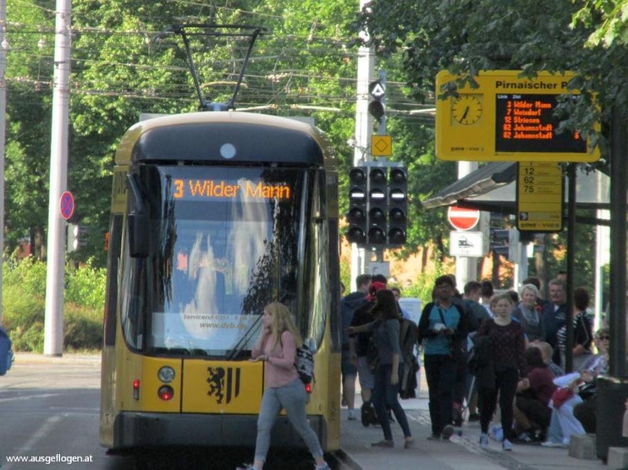 "Dresden Tram ""Wilder Mann"""