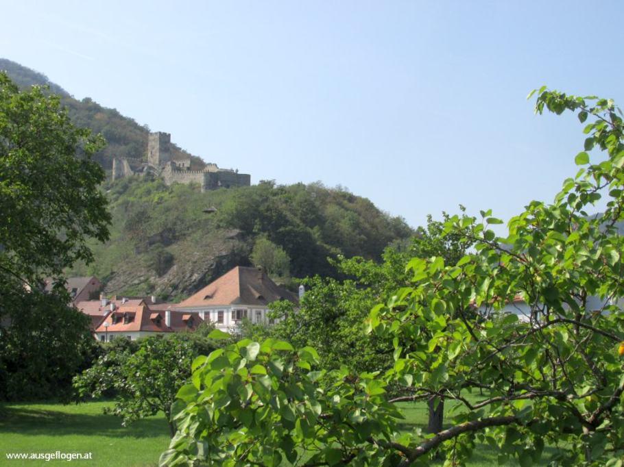Spitz Ruine Hinterhaus