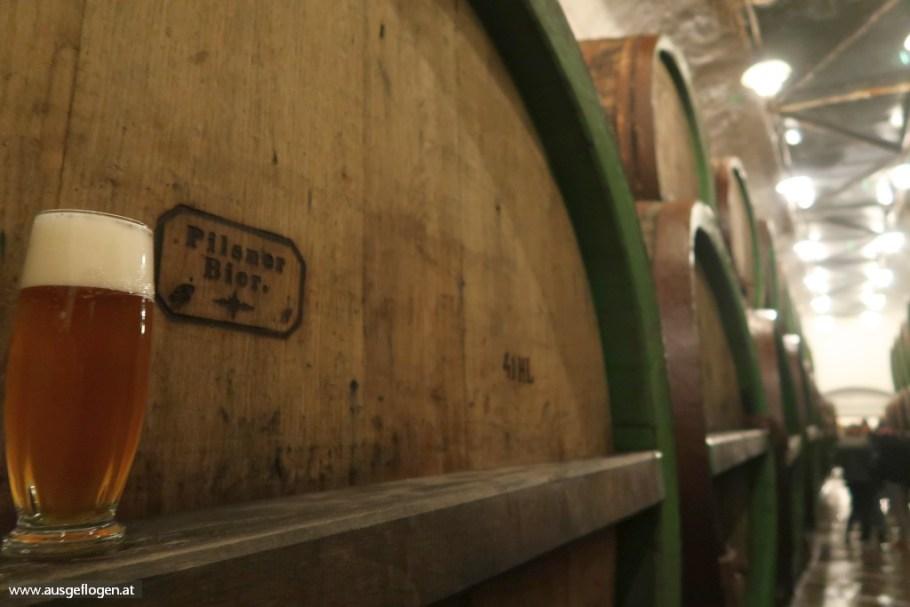 Pilsner Brauerei Führung