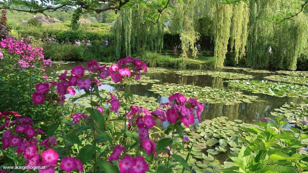 Garten Giverny Seerosenteich Monet