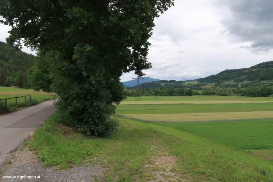 Murradweg Bruck
