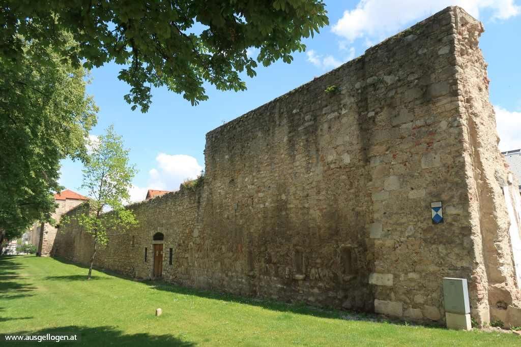 Stadtmauer Wr. Neustadt
