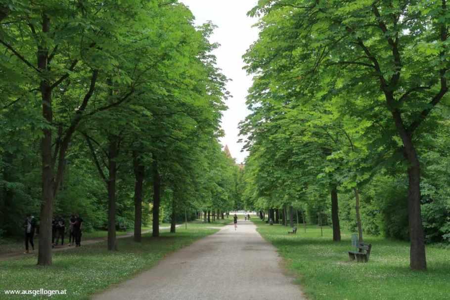 Es grünt so grün in….WIENER NEUSTADT! 12 Sehenswürdigkeiten-Tipps
