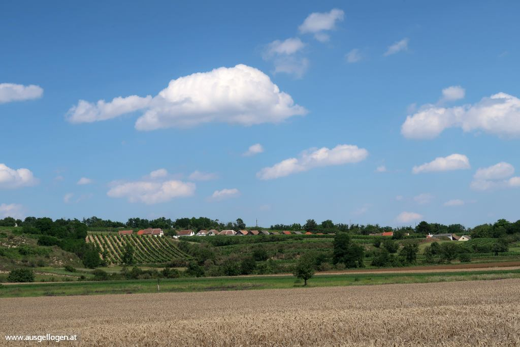 Pulkautal Haugsdorf