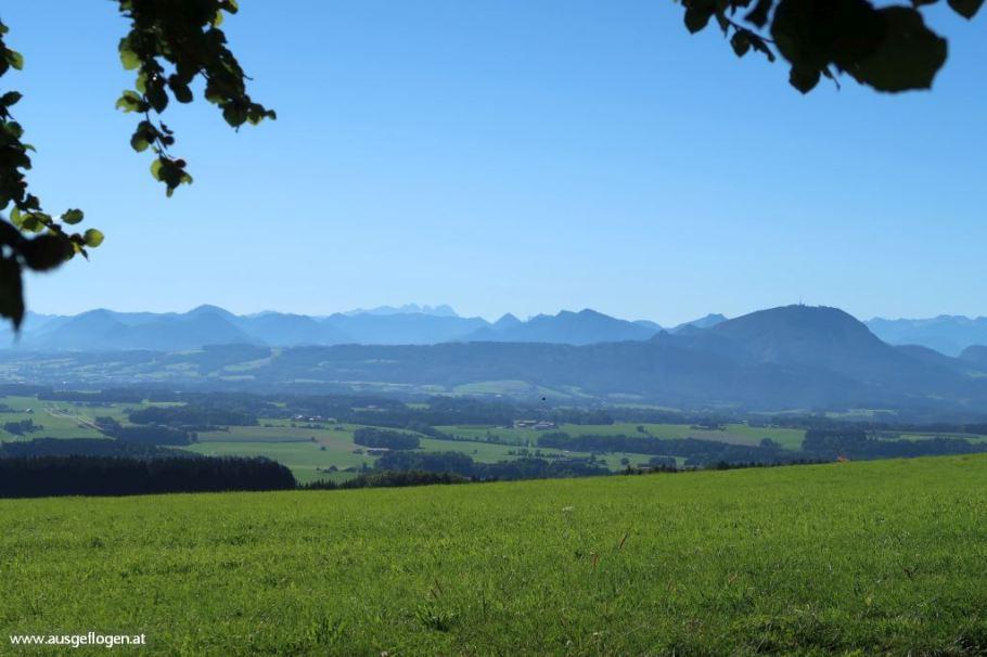 Kaiserbuche Obertrum Ausblick Salzburger Land