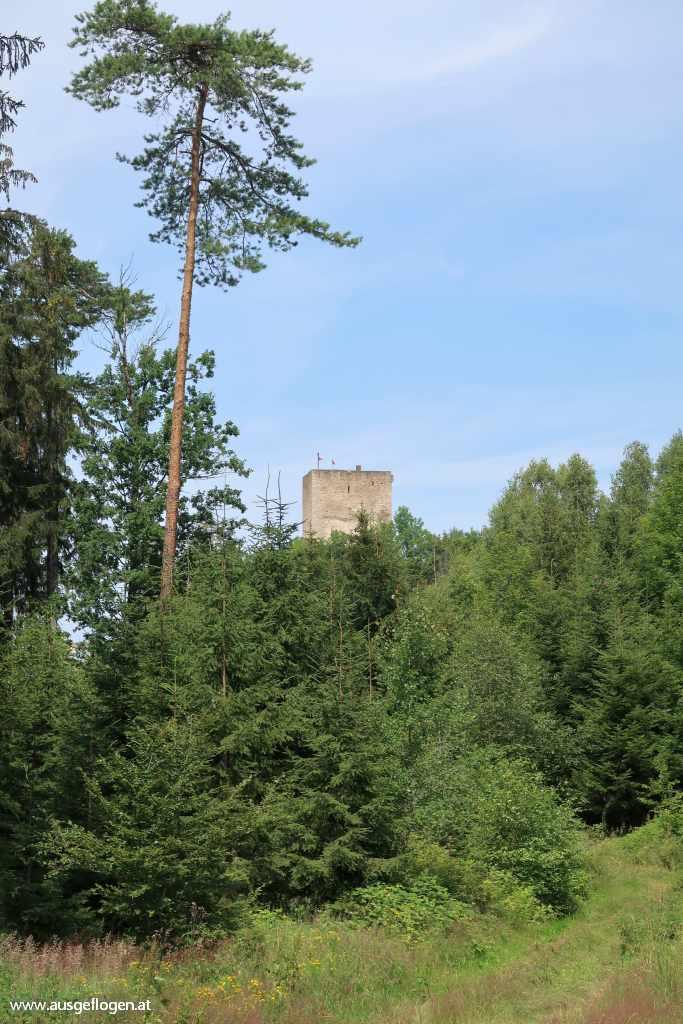 Ruine Landstein