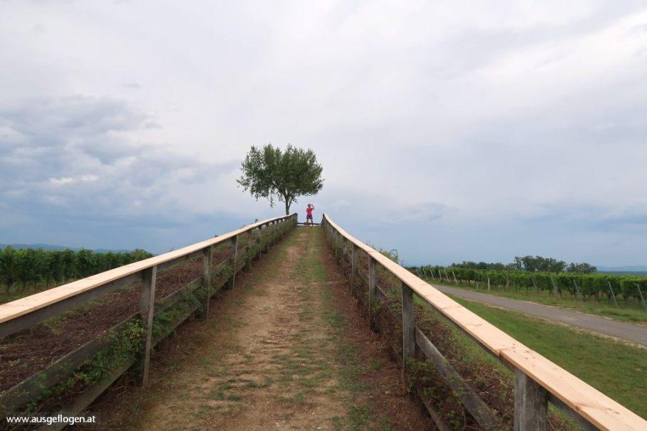 Lutschburger Weingebirge Aussichtsplattform