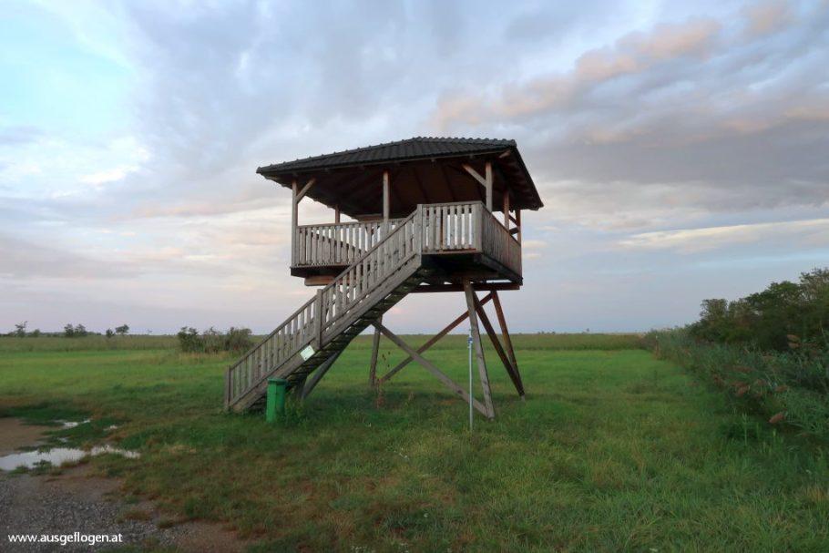 Mörbisch Aussichtsturm Grenze Neusiedlersee