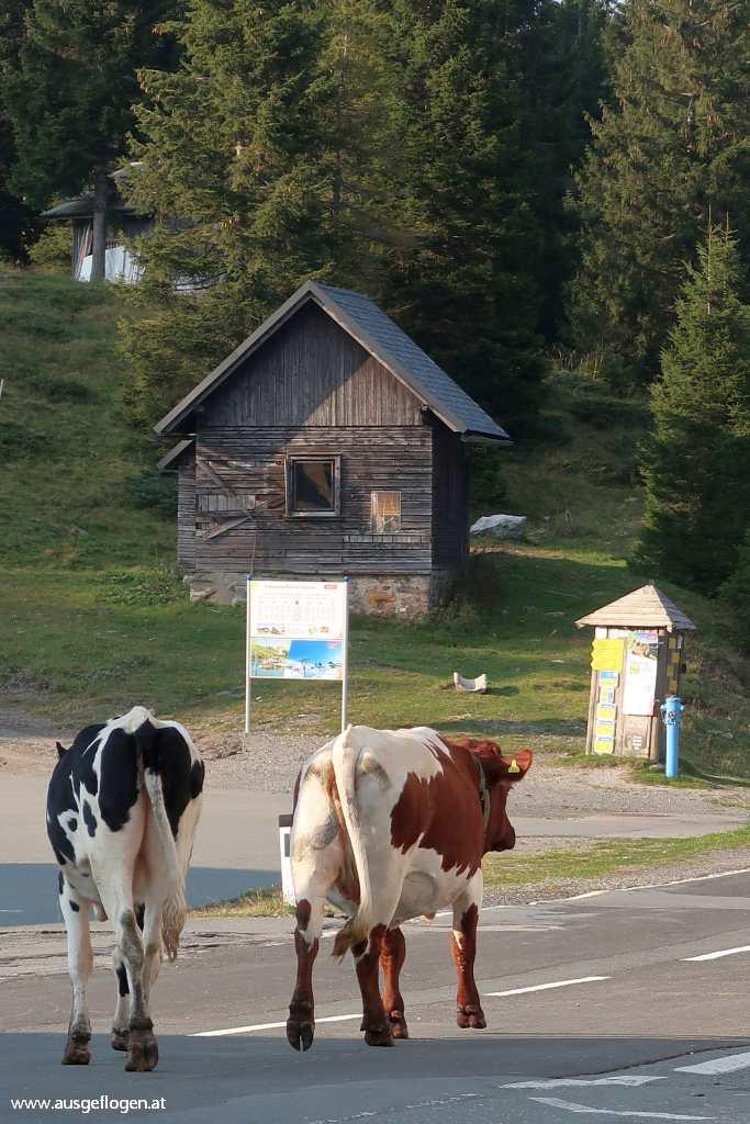 Nassfeldpass Grenzübergang karnische Alpen
