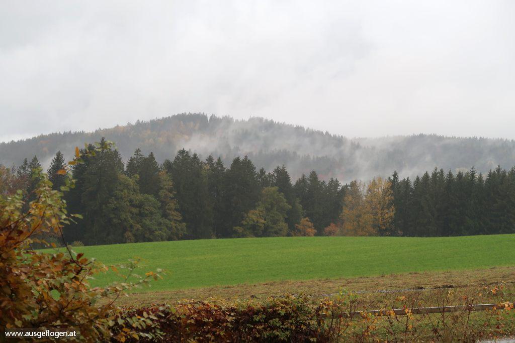 Sauwald oberösterreichische Donau