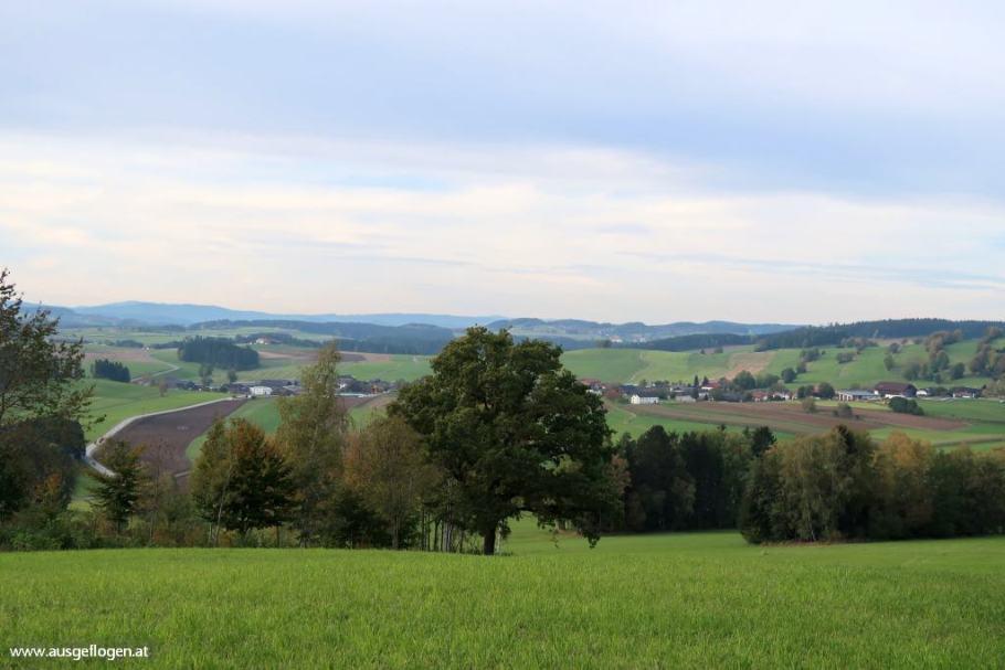 zwischen Salzach und Saalach:von Lofer bis zum Pass Lueg