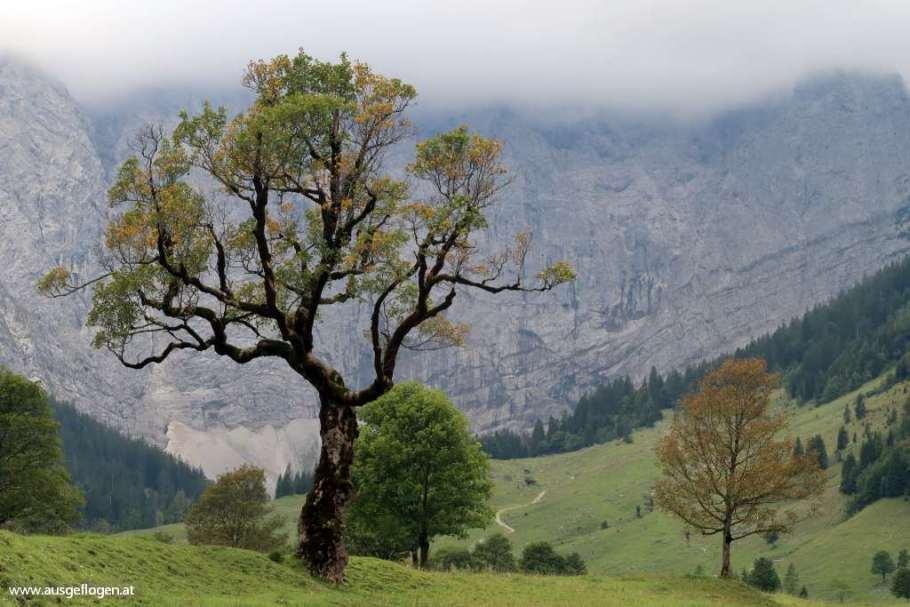 Großer Ahornboden Tirol schöne Orte