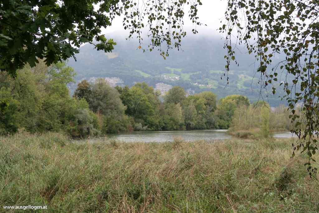 Alter Rhein Diepoldsauer Durchstich