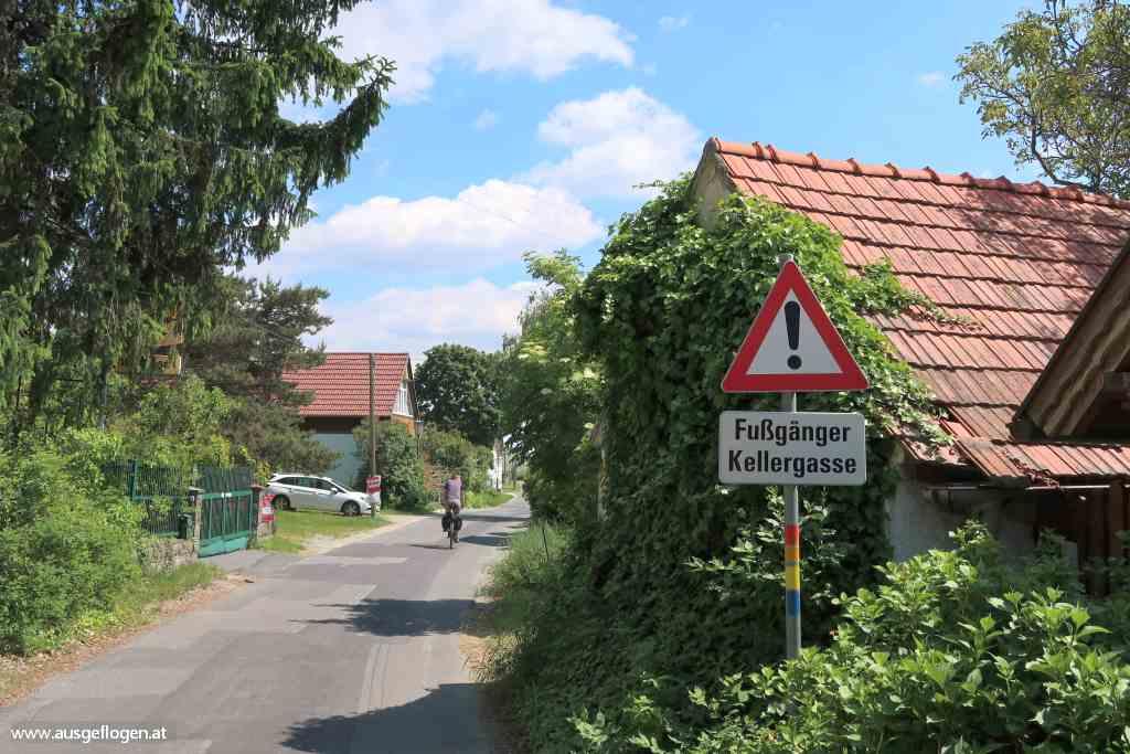 Paradiesroute Südburgenland Radweg  Eisenberg Weinberg Anstieg
