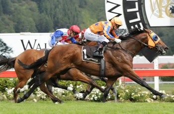 Australian-bred Age Of Fire takes out the Group One Levin Classic in New Zealand.