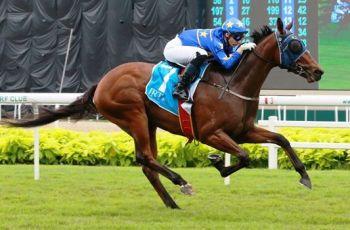 Lim's Lightning wins the IRT Juvenile Stakes at Kranji