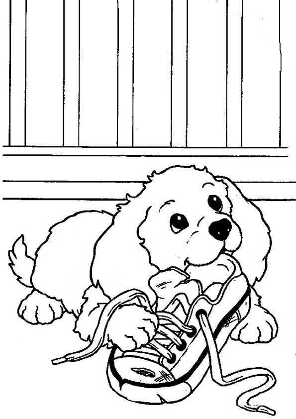 Hunde Ausmalbilder 17 Ausmalbilder Malvorlagen