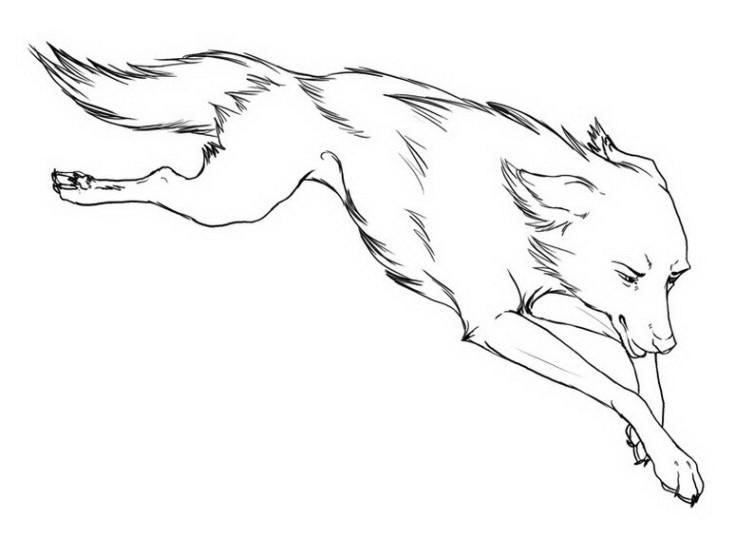 Ausmalbilder Fr Kinder Wolf 9