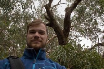 Selfie mit Koala