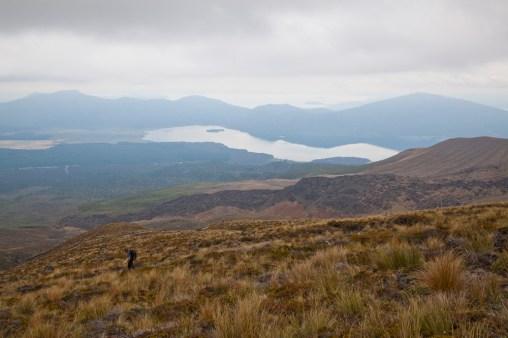Tongariro-Ausblick