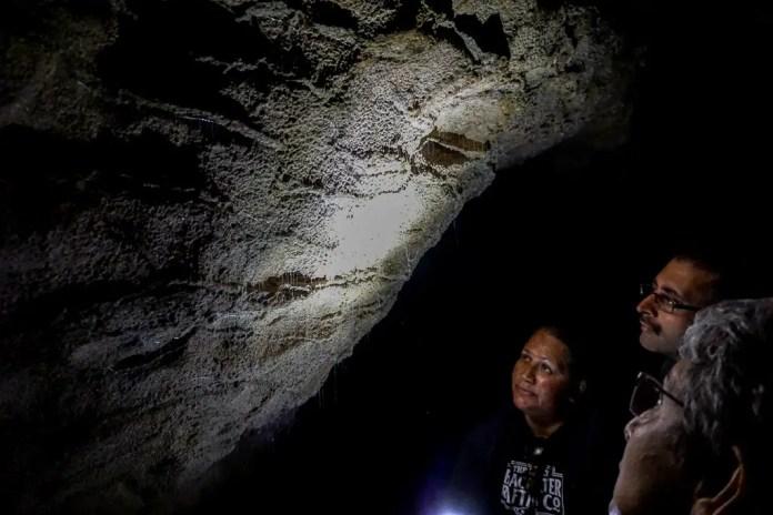 Glowworms in Ruakuri Cave