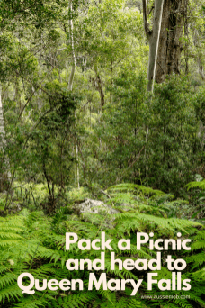 Pack a Picnic and head to Queen Mary Falls