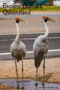 Explore Outback Queensland