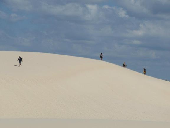 Some locals sand tobogganing on the dunes