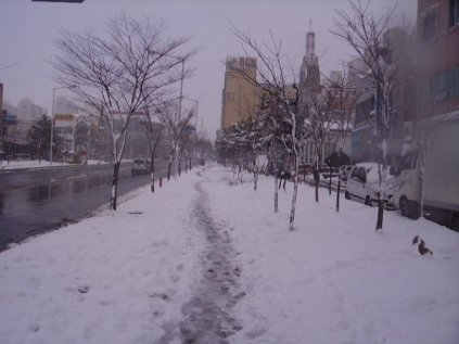 A snowy street in Gwangju, South Korea