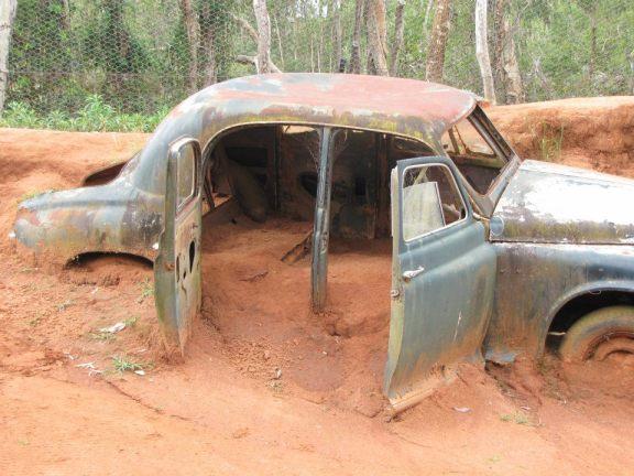 A rusty car in the dingo enclosure