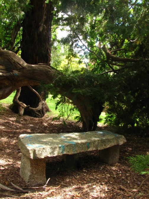 stone bench in the shade