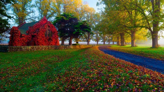 Armidale is simply stunning in autumn. Photo from Armidale Tourism.