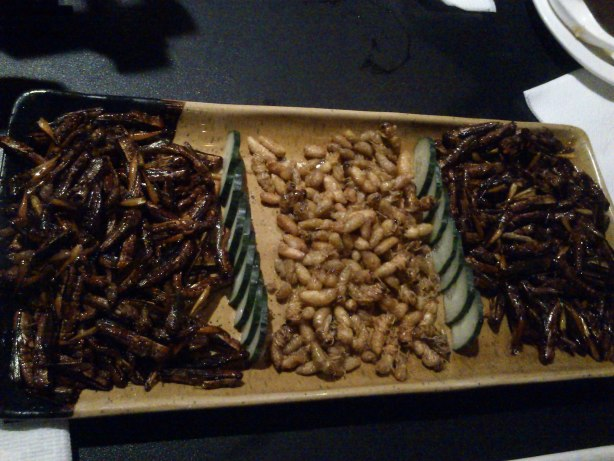 Fried honeybees and grasshoppers