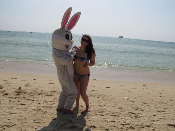 Easter Bunny on Christmas Day