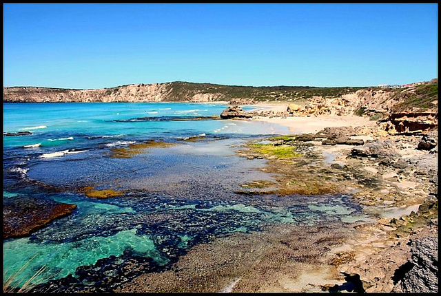 I'll let this picture convince you of Kangaroo Island's appeal. Photo by Megan Spooner.