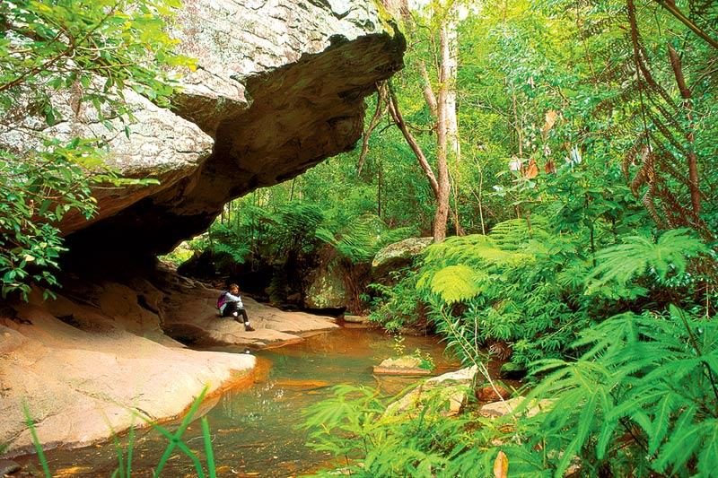 Carnarvon Gorge is full of secluded gorges and caves perfect for some 'me time'. Photo courtesy of Auswalks.
