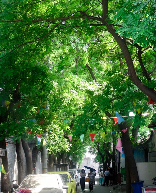 I was surprised by just how green Beijing is. I had expected a built up concrete jungle.