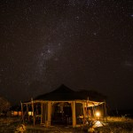Serengeti Glamping: A Night Under the African Stars