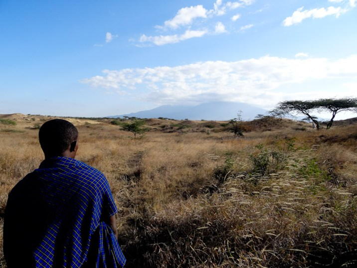 A guided nature walk through the surrounding wilderness offers a fascinating insight into Masai life and how they live off the land.